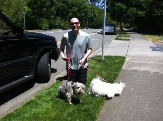 walking the doggies
