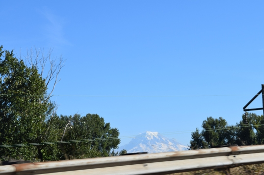 my attempt to get a pic of mt. rainier inside the car (total fail!)