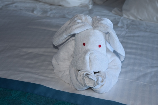 animal towel prepared by the housekeeper