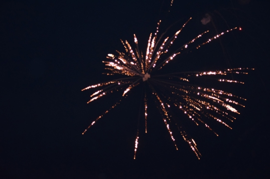 watched Fireworks on the 4th night!